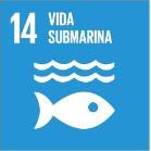 14- Vida Submarina