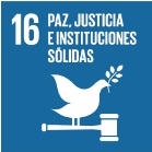 16- Peace, Justice and Strong Institutions
