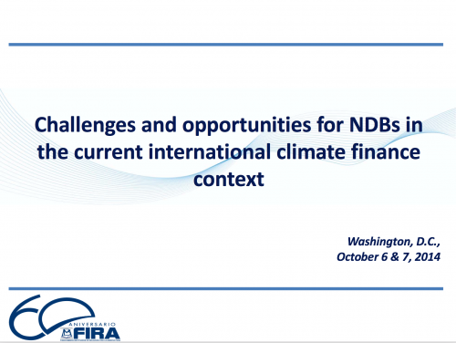 Challenges and opportunities for NDBs in the current international climate finance context_Foto_Relevante