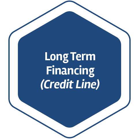 Long Term Financing (Credit Line)