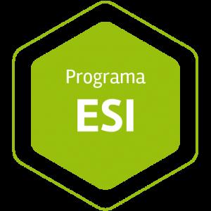 Programa ESI