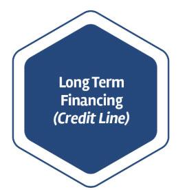 Long Term Financing (Credit Line)