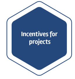 Incentives for Projects
