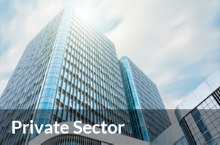 Private Sector