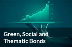 Green Social and Thematic Bonds
