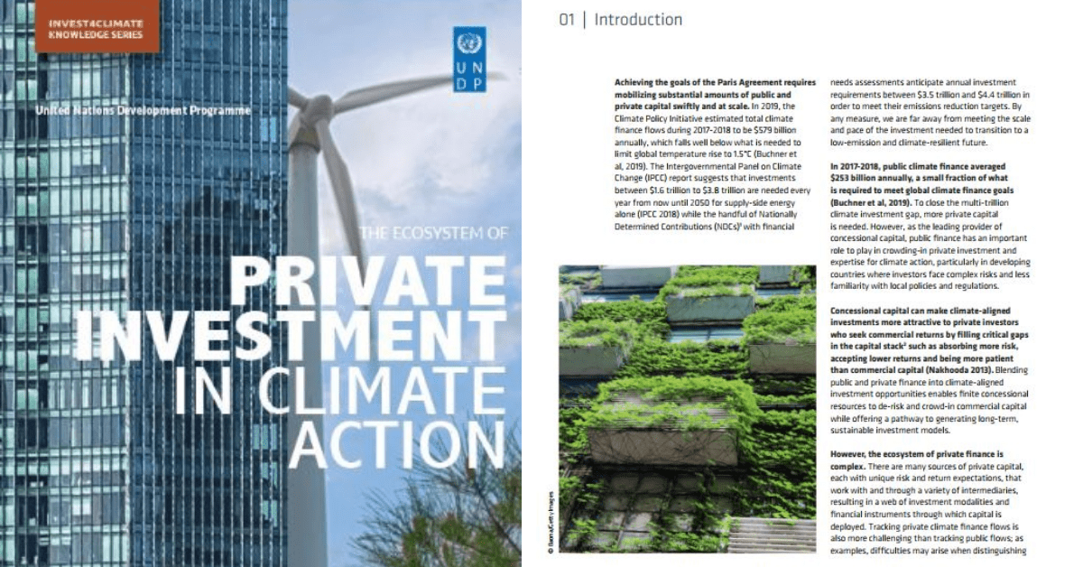 The Ecosystem of Private Investment in Climate Action