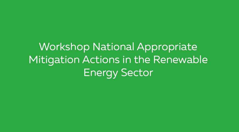 Workshop-National-Appropriate-Mitigation-Actions
