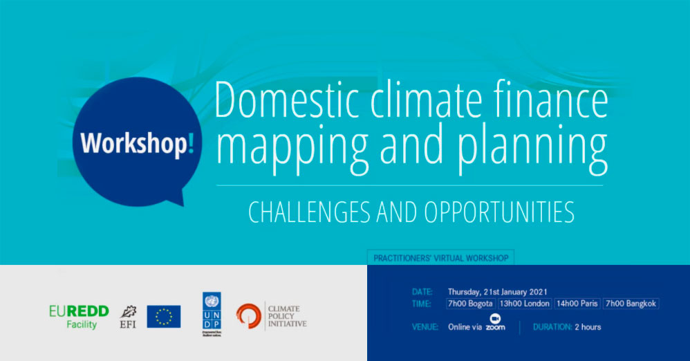 Domestic Climate Finance Mapping & Planning Workshop