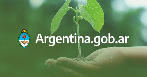 Argentina's CNV calls for consultation to create special regime focused on sustainable investment