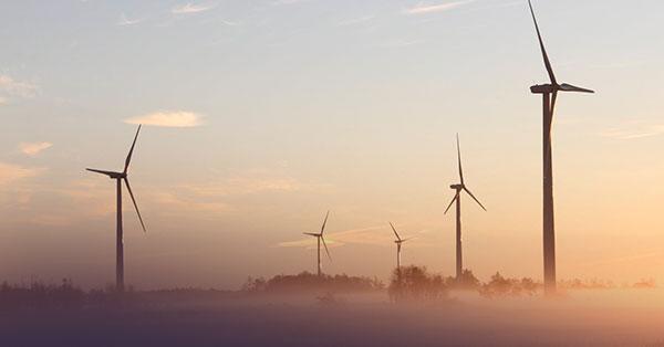 Los fondos «verdes» han demostrado que concentran menos, reduciendo el riesgo de choque climático, según el organismo de control de la UE