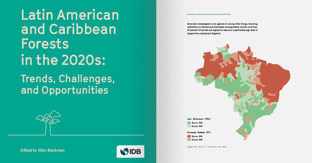 Los bosques de América Latina y el Caribe en la década de 2020: Tendencias, retos y oportunidades