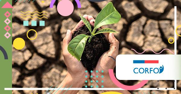 Corfo lanza programa tecnológico para potenciar la agricultura en zonas desérticas